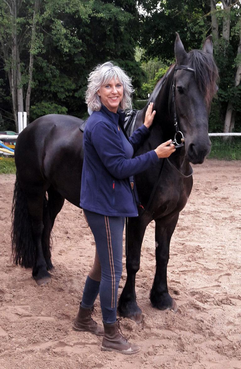 Mensch Pferde Coaching